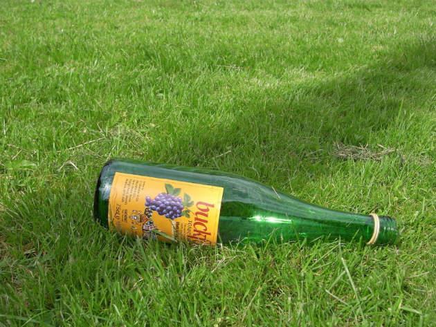 empty buckfast bottle