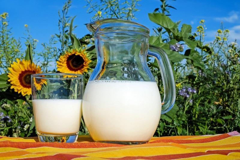 Dodla Dairy